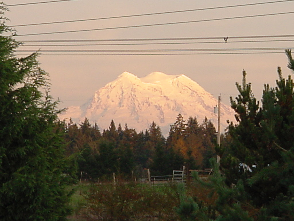 Our Mount Rainier